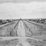 View from the Southern Tower, looking north, at No 14 Camp of the Loveday Internment Camp Group. C Compound is to the left and B Compound to the right. Photograph by Hedley Cullen. AWM 122991.