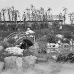 A landscaped Japanese type garden built by internees in 14B Compound of No 14 Camp in the Loveday Internment Camp Group, December 1945. Photographer: Hedley Keith Cullen. AWM 123010.